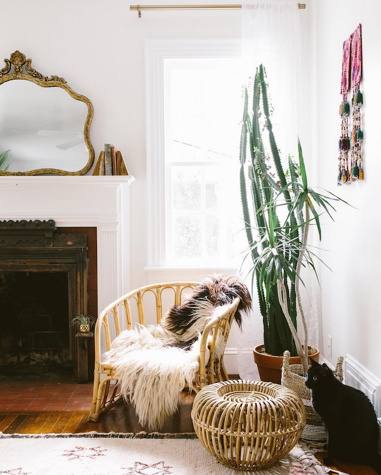 boho chic interior design with large cactus, pattern rug and gold mirror