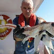 Animal Planet's Successful River Monsters Series