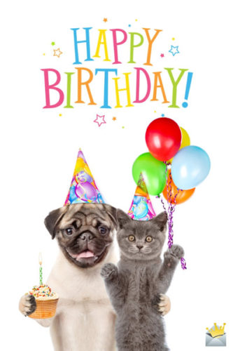 Happy Birthday Wishes status/images/ lines