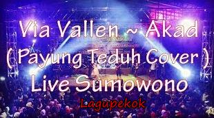 Free Download Via Vallen Payung Teduh Mp3 Lagu Koplo Terbaru (5:7 MB)