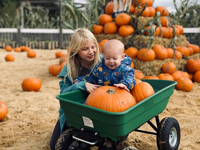A baby sitting in a green pull along trailer with pumpkins, his sister is crouched down next to it