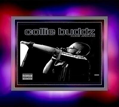 blind to you collie buddz