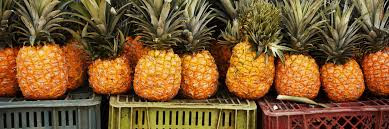 Advantages Of Eating Pineapple