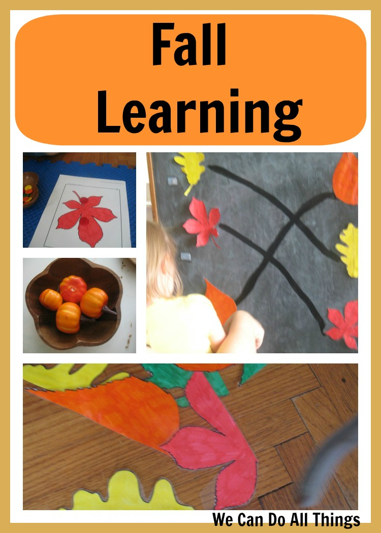 We Can Do All Things: Fall Learning