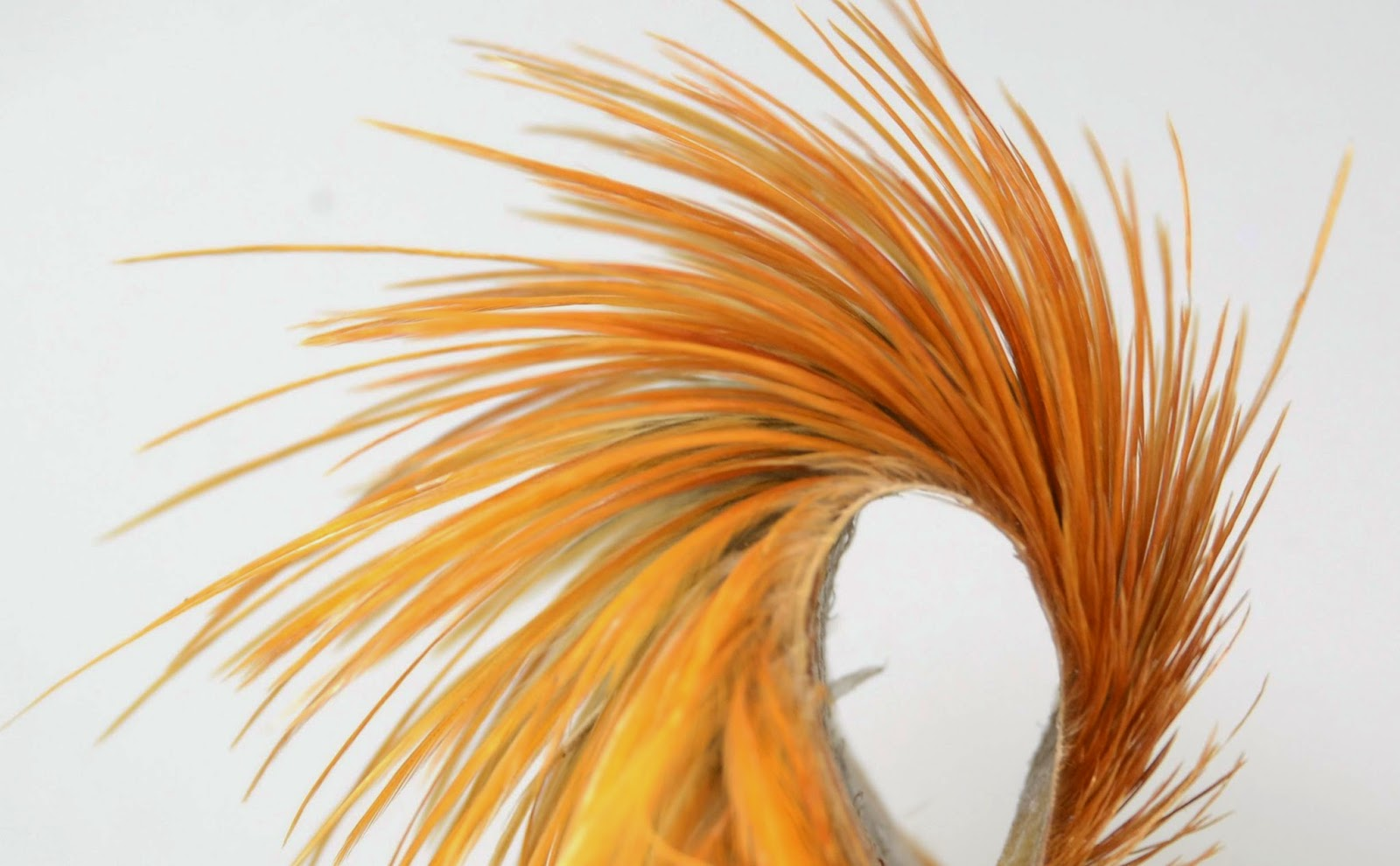 The Ultimate Hackle Throwdown - Fly Fish Food -- Fly Tying