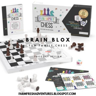 BRAIN BLOX Fun Family Chess ~ Product Review
