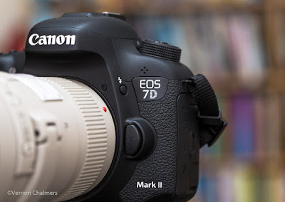 Current Canon APS-C Flagship : Canon EOS 7D Mark II (with Canon 400mm f/5.6L USM Lens)