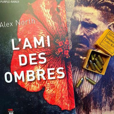 Blog PurpleRain Livre : L'ami des ombres •• Alex North