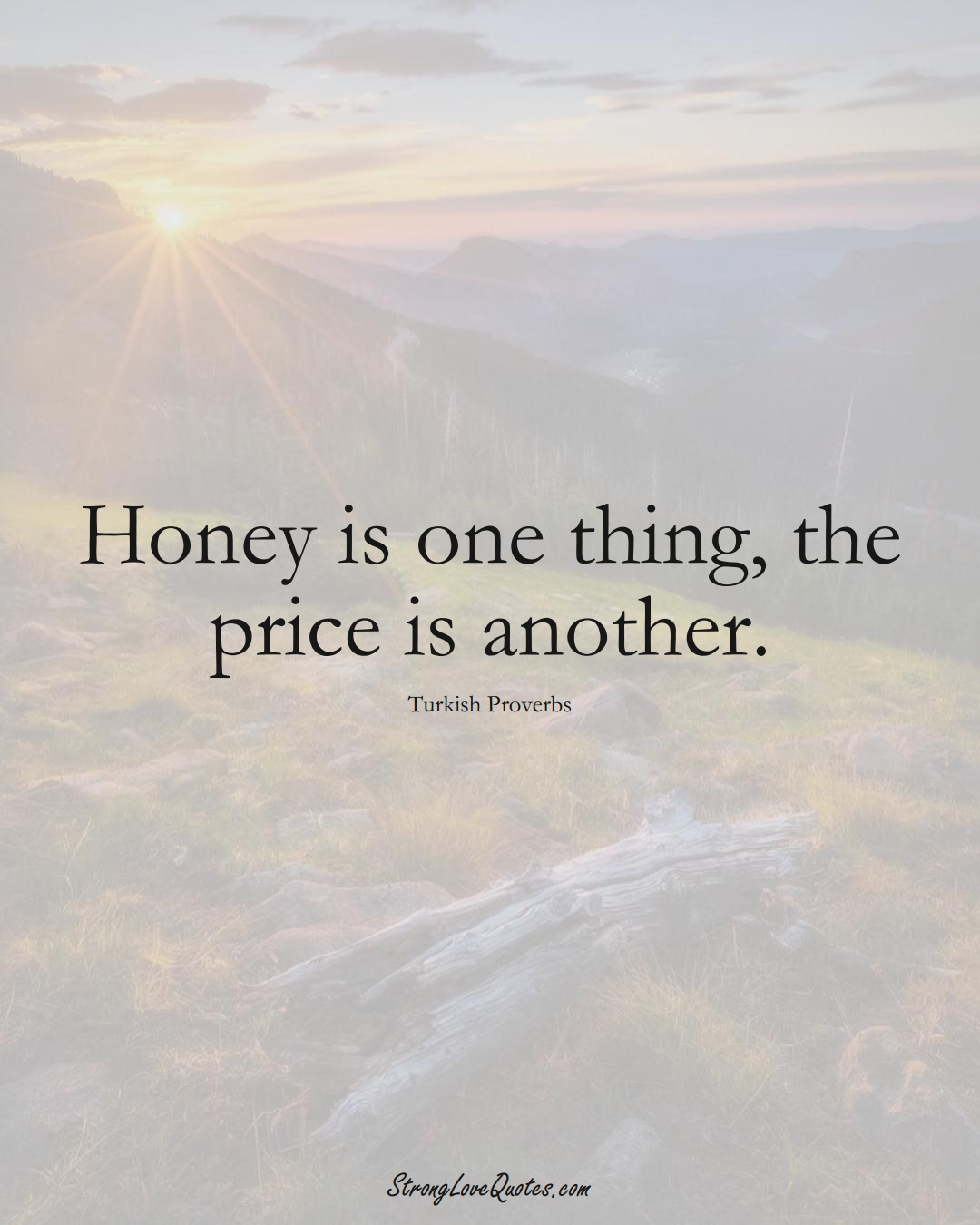 Honey is one thing, the price is another. (Turkish Sayings);  #MiddleEasternSayings