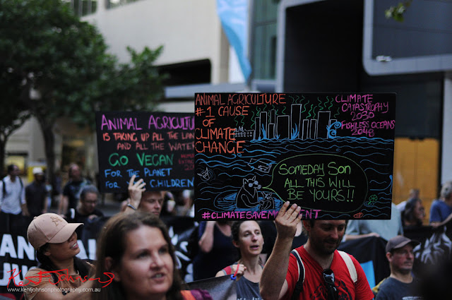 Sydney Climate Rally - Vegans bringing up the rear of the march.