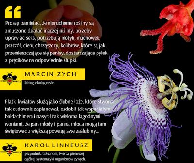 Mem z cytatami Marcina Zacha i Karola Linneusza