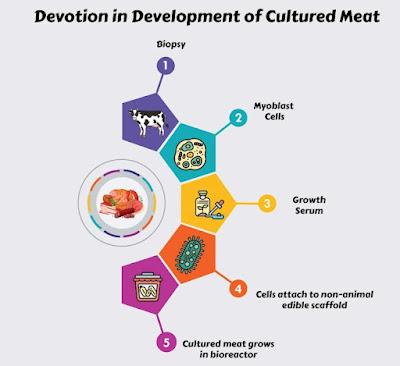 Devotion in development of Cultured Meat