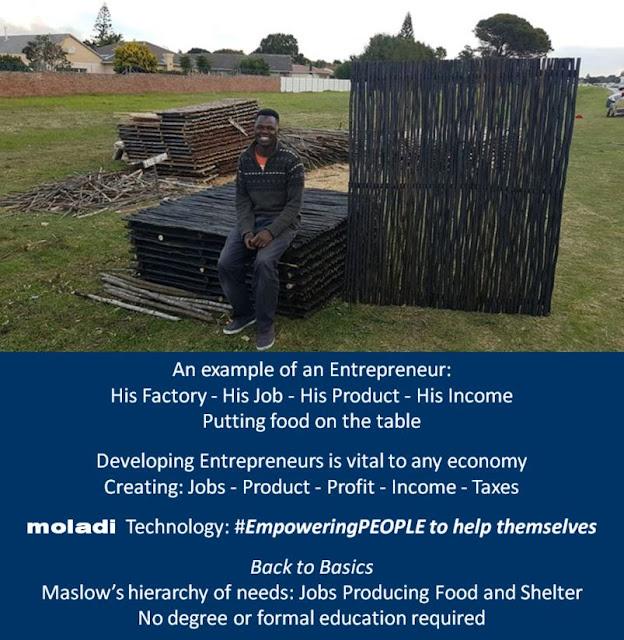 moladi-creating-entrepreneurs