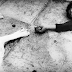 TERROR - pubblicano la nuova canzone e il secondo video trailer