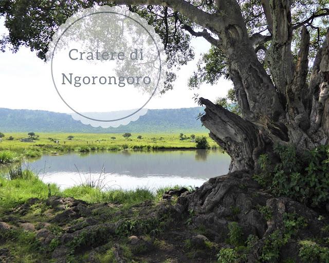 Il cratere Ngorongoro: una delle meraviglie naturali d'Africa