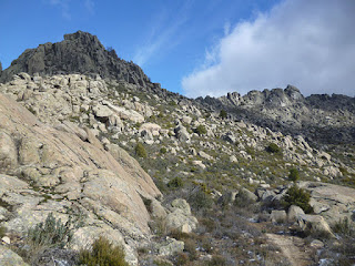Sierra de la Cabrera. Cara norte