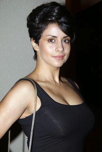 Gul Panag punjabi actress, Gul Panag new film photos, Gul Panag Biography wiki
