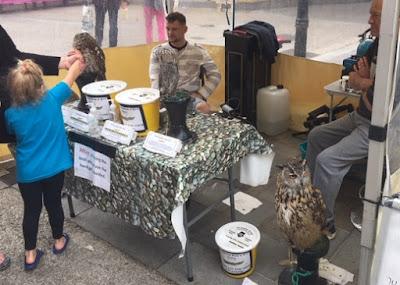 Usar búhos u otro animal como reclamo turístico no es ético.