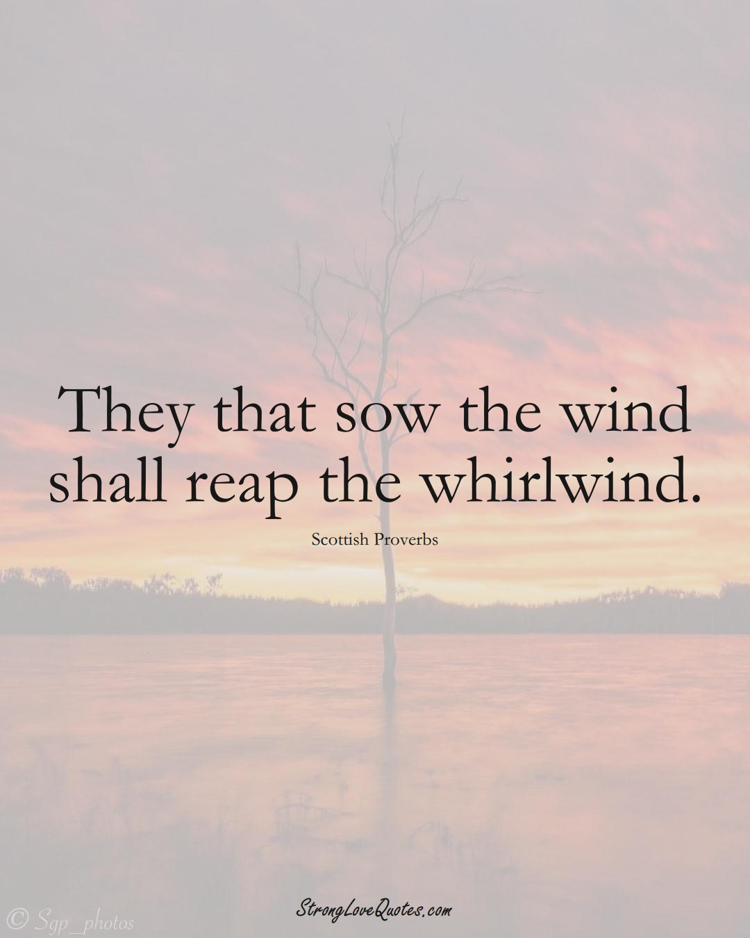 They that sow the wind shall reap the whirlwind. (Scottish Sayings);  #EuropeanSayings