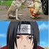 Itachi kutyája: