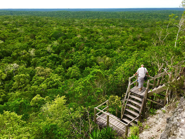 Archaeologist Richard Hansen looks out over the Maya Biosphere he hopes to develop from a tower at El Mirador.