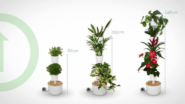 Citysens: un jardín vertical para interiores creativos