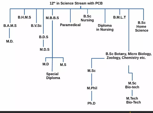 With 12th PCB (Physics, Chemistry, Biology)