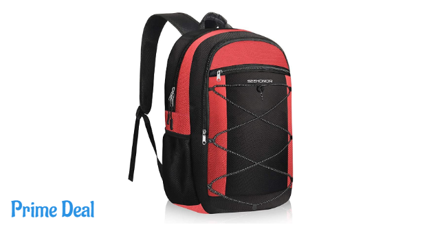 Insulated Cooler Backpack 40% off