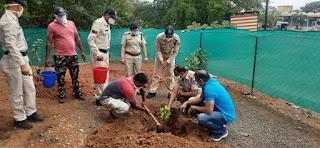 विश्व पर्यावरण दिवस पर पुलिस अधीक्षक ने किया पौधा रोपण