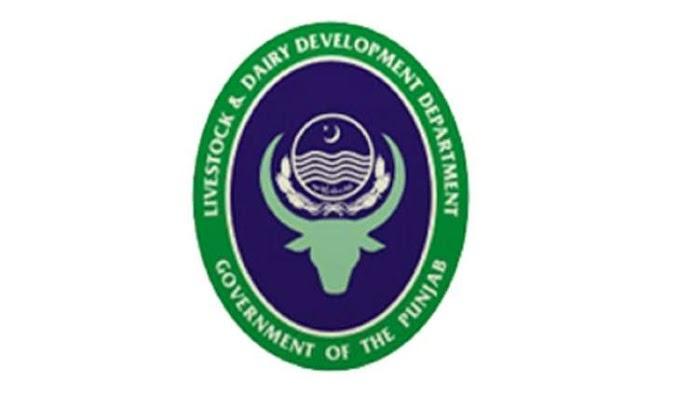 Mehkma Live Stock & Dairy Development Department Khyber Pakhtunkhwa Jobs 2021