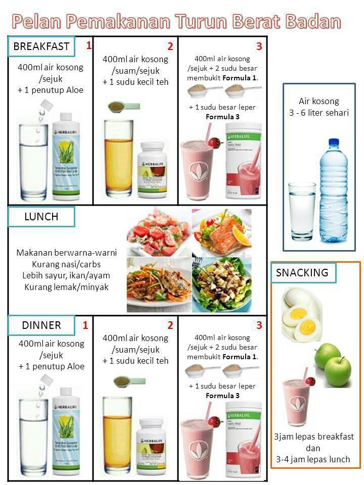 Cara Pemakanan Diet Herbalife Yang Betul Xsonarwomen