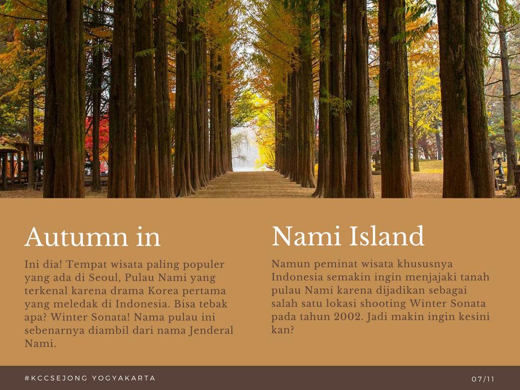 liburan korea autumn in nami island 23 oktober 2017 kcc. Black Bedroom Furniture Sets. Home Design Ideas