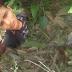 Guarda Municipal localiza corpo de jovem assassinado no Parque da Macaqueira em Jacobina