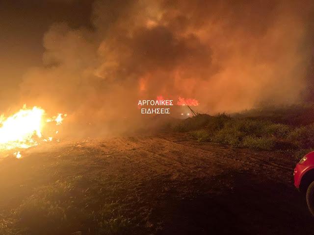 13 αγροτοδασικές πυρκαγιές στο Δήμο Άργους Μυκηνών τον Μάρτιο