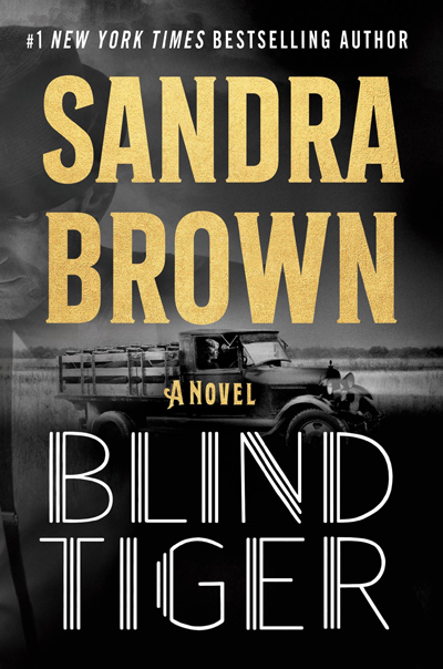 New Release: Blind Tiger by Sandra Brown