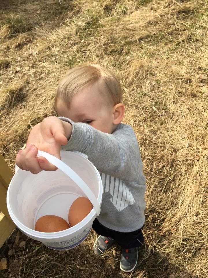 tyttö ottaa valtavan munaa