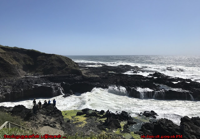 Oregon Spouting Horn