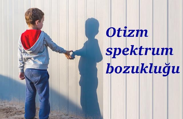 otizm-nedir-hastalikbelirtileri.net