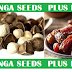 How to eat moringa seeds with enhanced taste and more health benefits