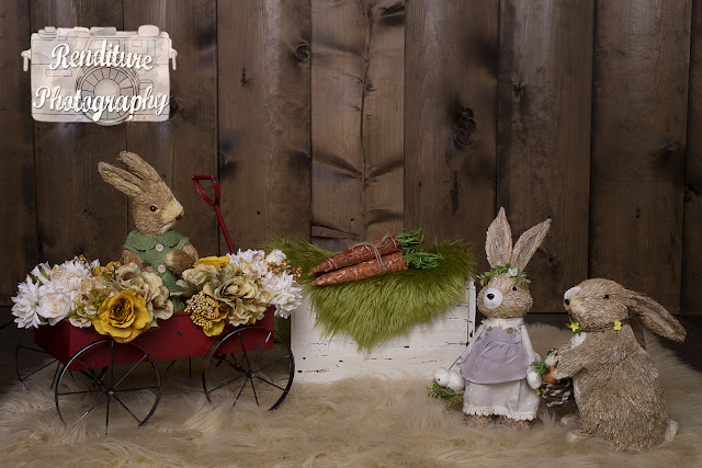 Easter-Newborn Photography,Saskatoon,Photographer,Maternity,Photography,Newborn,Photographers,Pregnancy,Family,Renditure,Child,Photos,Saskatchewan,YXE,SK,IVF