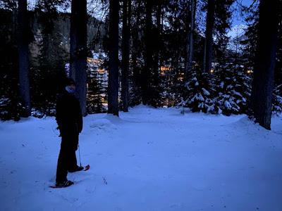Schneeschuh Tour quer durch den Wald - Ein Erfahrungsbericht, Test und Review auf und abseits der Schneeschuh Trails