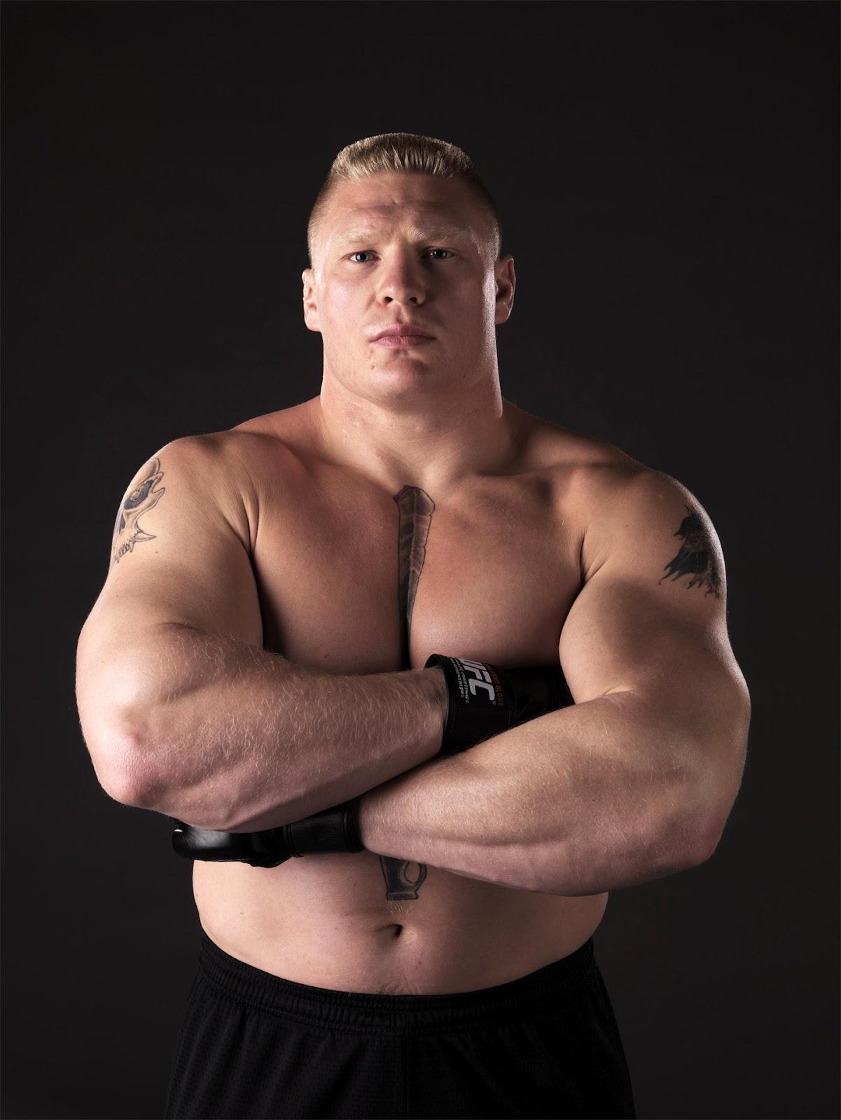 Brock Lesnar V
