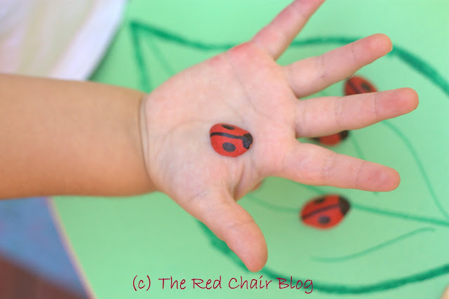Painted pistachio shell ladybugs from The Red Chair Blog