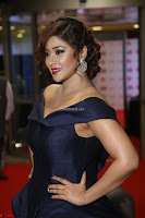 Payal Ghosh aka Harika in Dark Blue Deep Neck Sleeveless Gown at 64th Jio Filmfare Awards South 2017 ~  Exclusive 062.JPG
