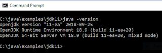Applying New JDK 11 String Methods