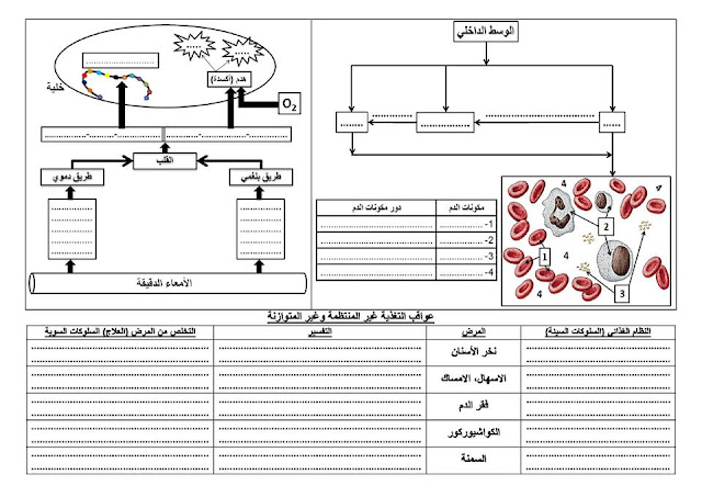 مخططات صماءخاصة بالعلوم الطبيعية للسنة الرابعة متوسط الاستاذ خالد محمودي