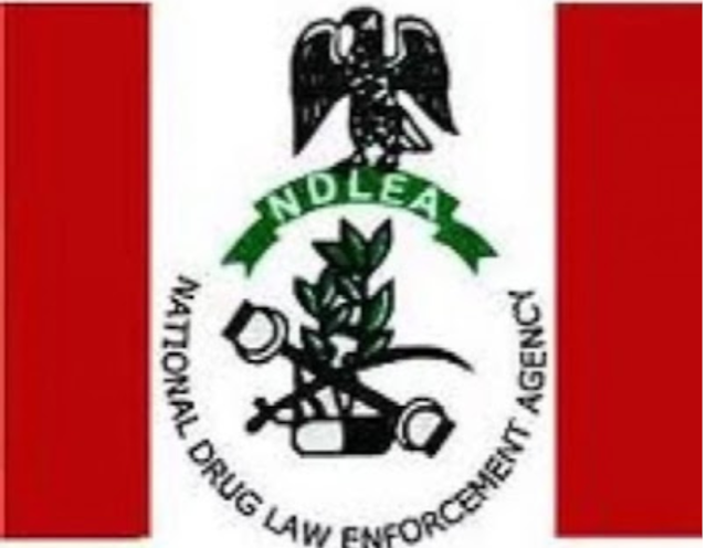 Recruitment: NLDEA publishes a list of successful recruits, reveals how to search their names.