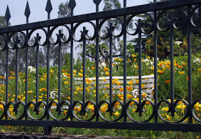 grades, banco branco e flores amarelas