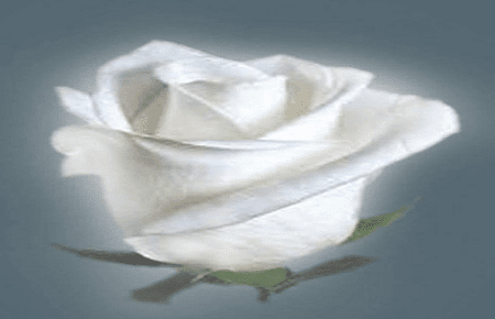 Kumpulan puisi romantis dan puisi cinta yang mesra.