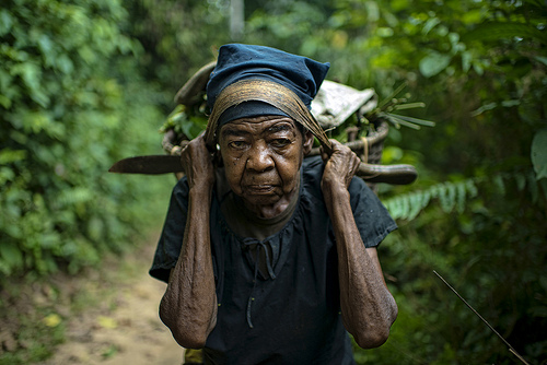 Elderly woman bringing firewood to the village of Masako, Kinsagani, Democratic Republic of Congo.